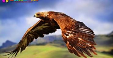 Балалар тақпақтары