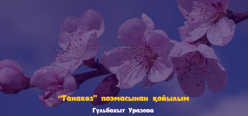 поэма