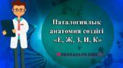 Паталогиялық анатомия сөздігі «Е, Ж, З, И, К»