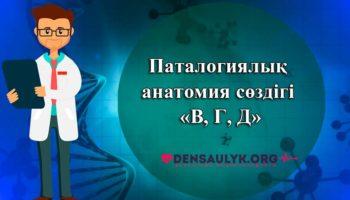 Паталогиялық анатомия сөздігі «В, Г, Д»